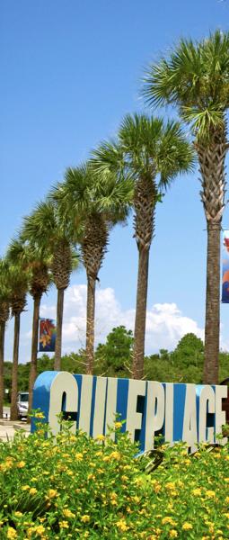 Blue Mountain Beach Florida Map.Blue Mountain Beach Fl Discover 30a Florida Neighborhoods