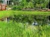 Wateround Nature 2